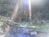 タンテイロの森終了
