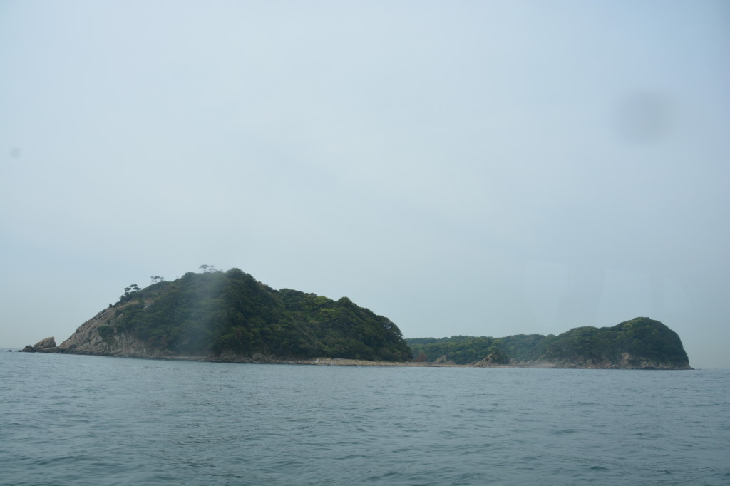 Overview from north of island.