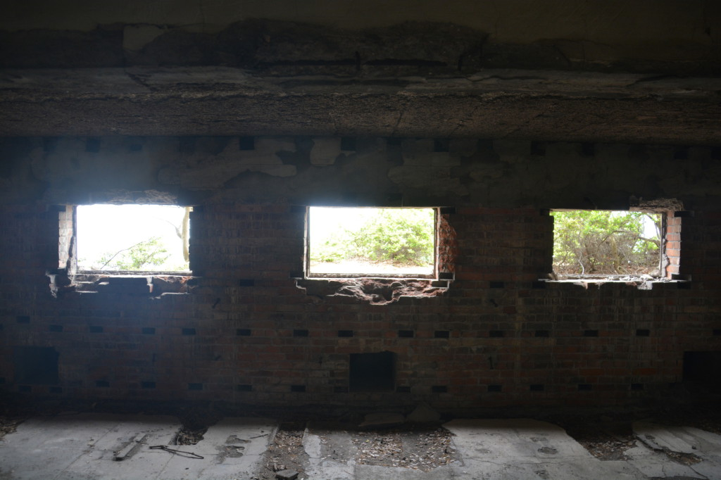 From inside of the remains